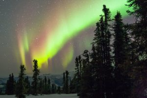 The Northern Lights by Mark Nicholas