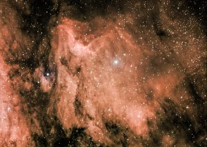 The Pelican Nebula by Mark Nicholas