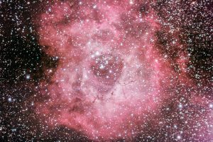 The Rosette Nebula by Mark Nicholas